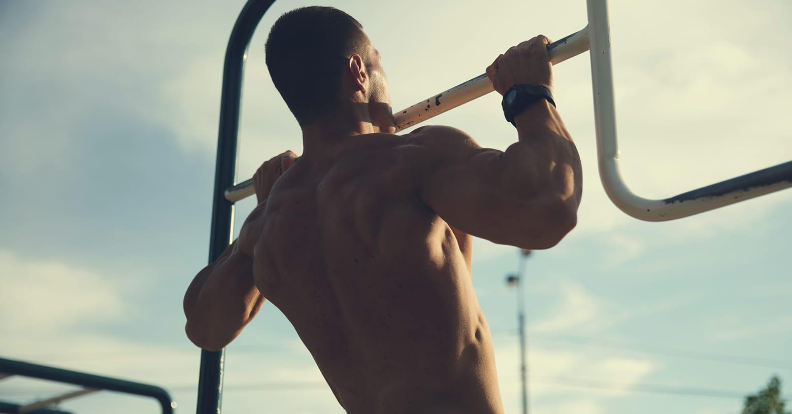 look more muscular - muskulösen Körper - paraître plus musclé - EVO Fitness