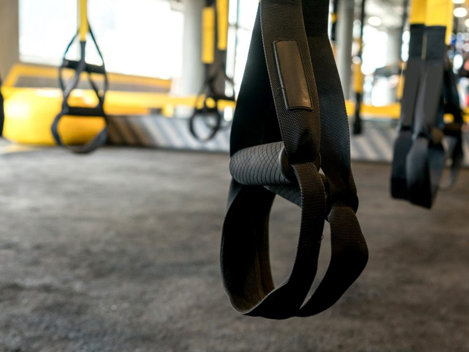 trx 101 - trx-101 - EVO Fitness